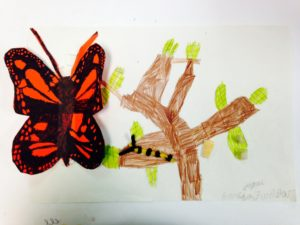 Monarch life cycle 2nd